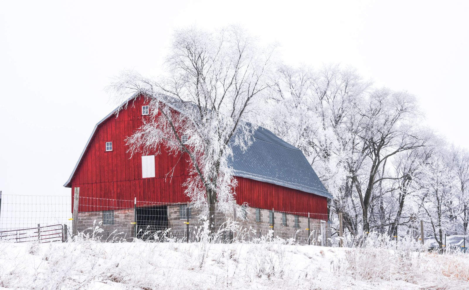 Frosty Red Barn