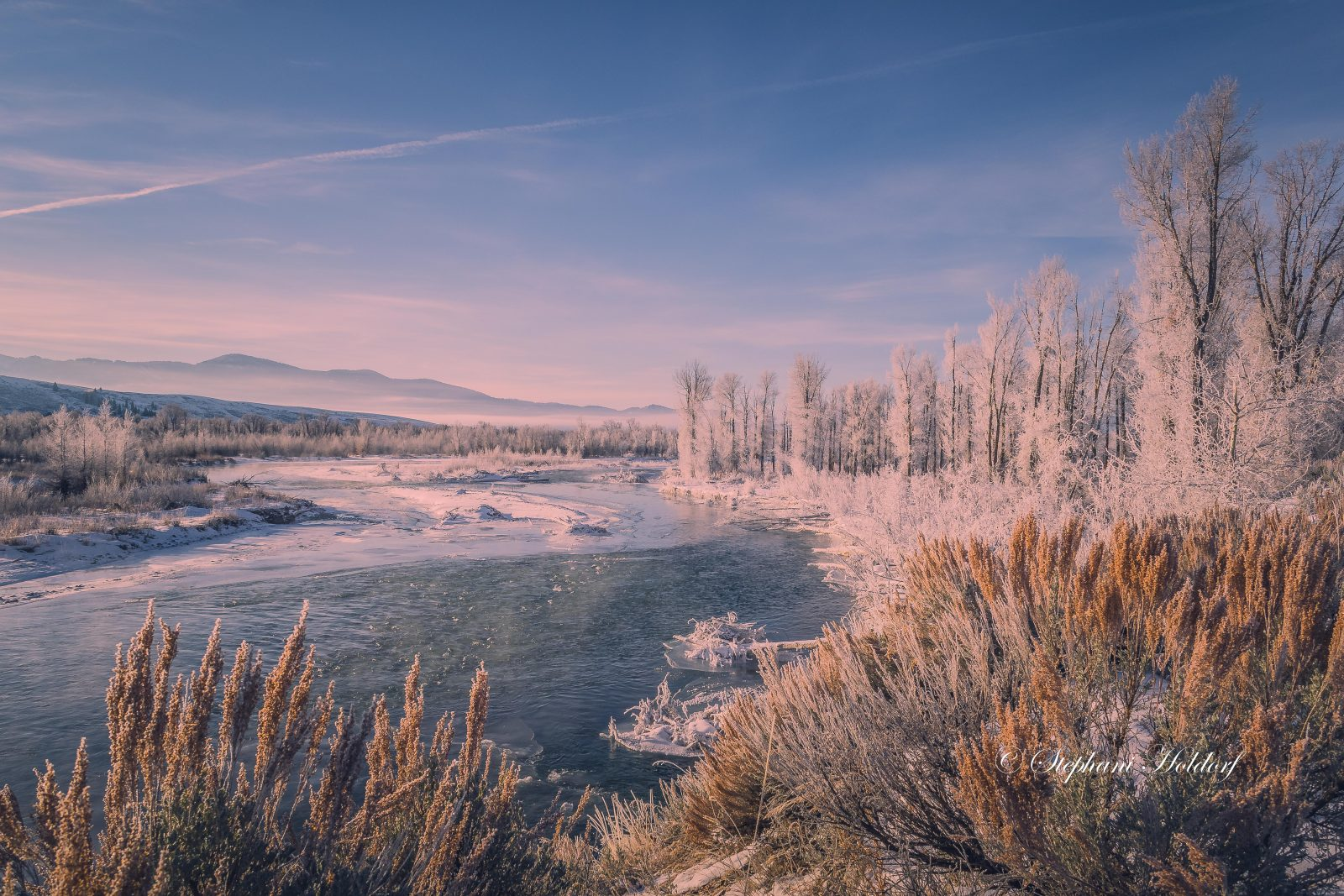 Frosty on the Gros Ventre