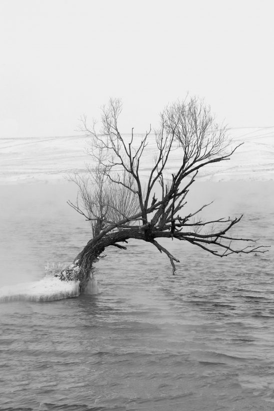 Cold Day on the Missouri in Black and White