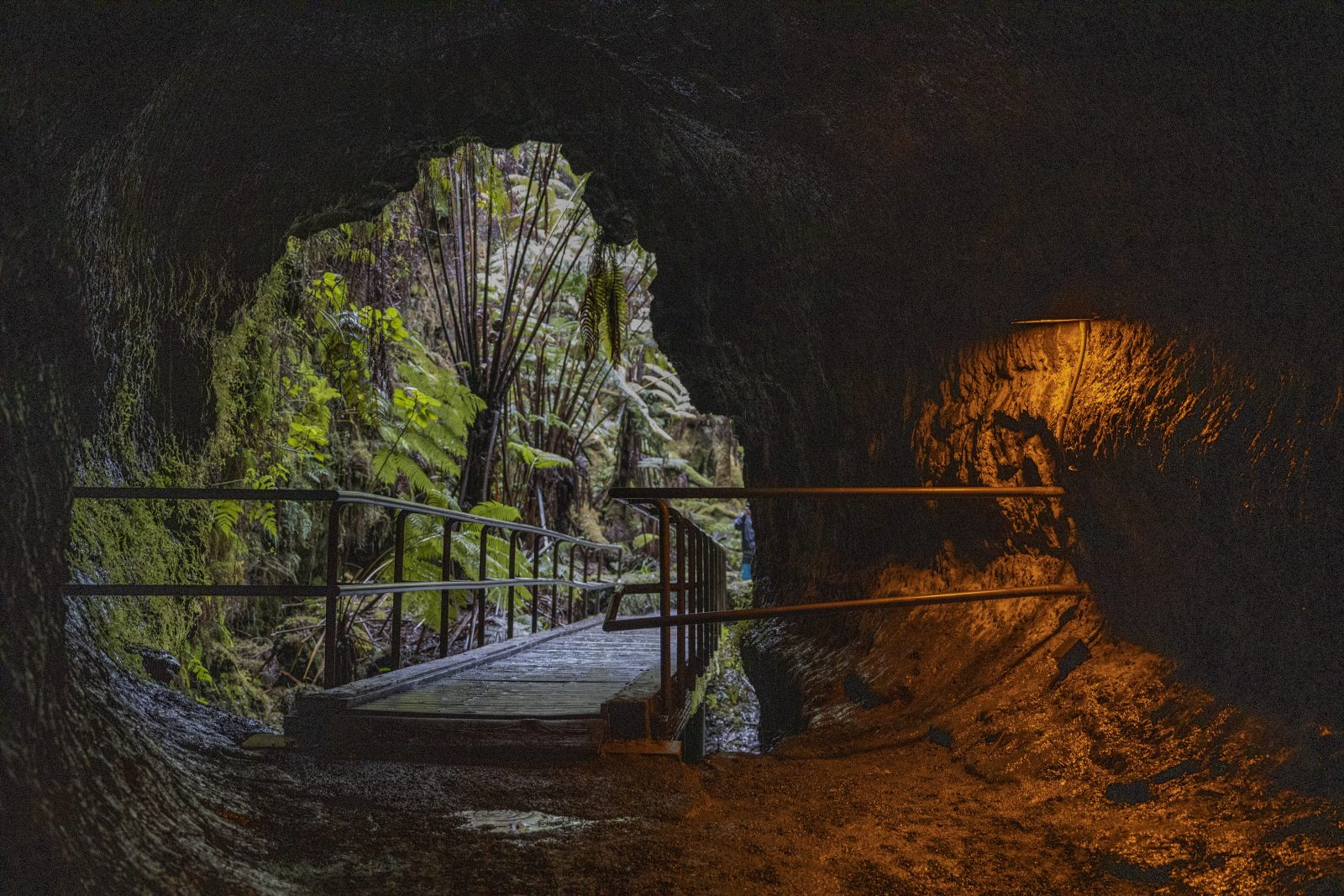 Looking out of Thurston Lava Tube