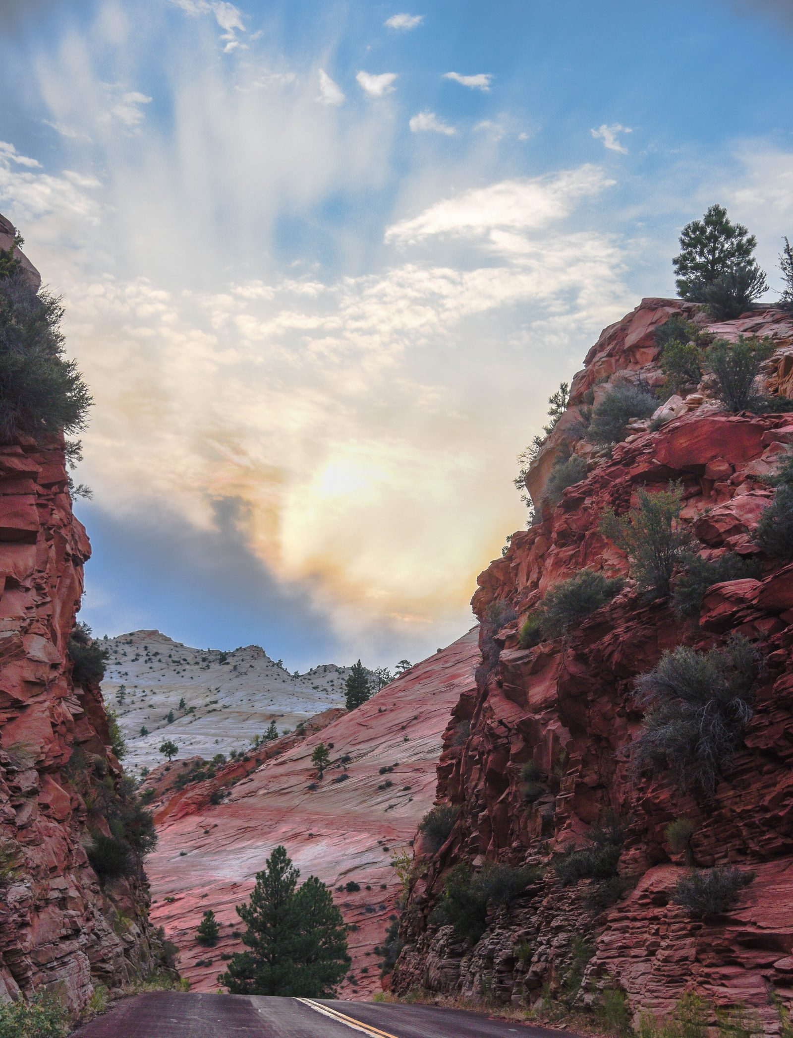 The Road through Zion