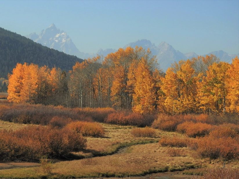 Fall in Wyoming Grand Tetons