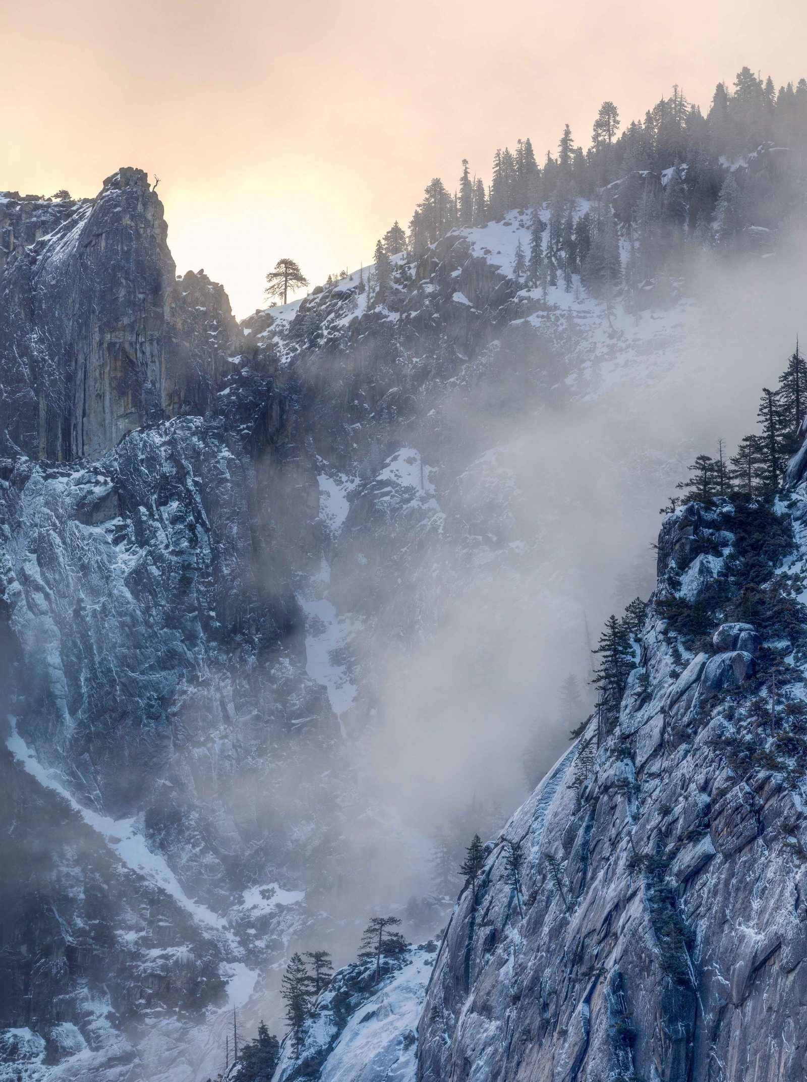 Misty Winter Granite Cliffs, YNP