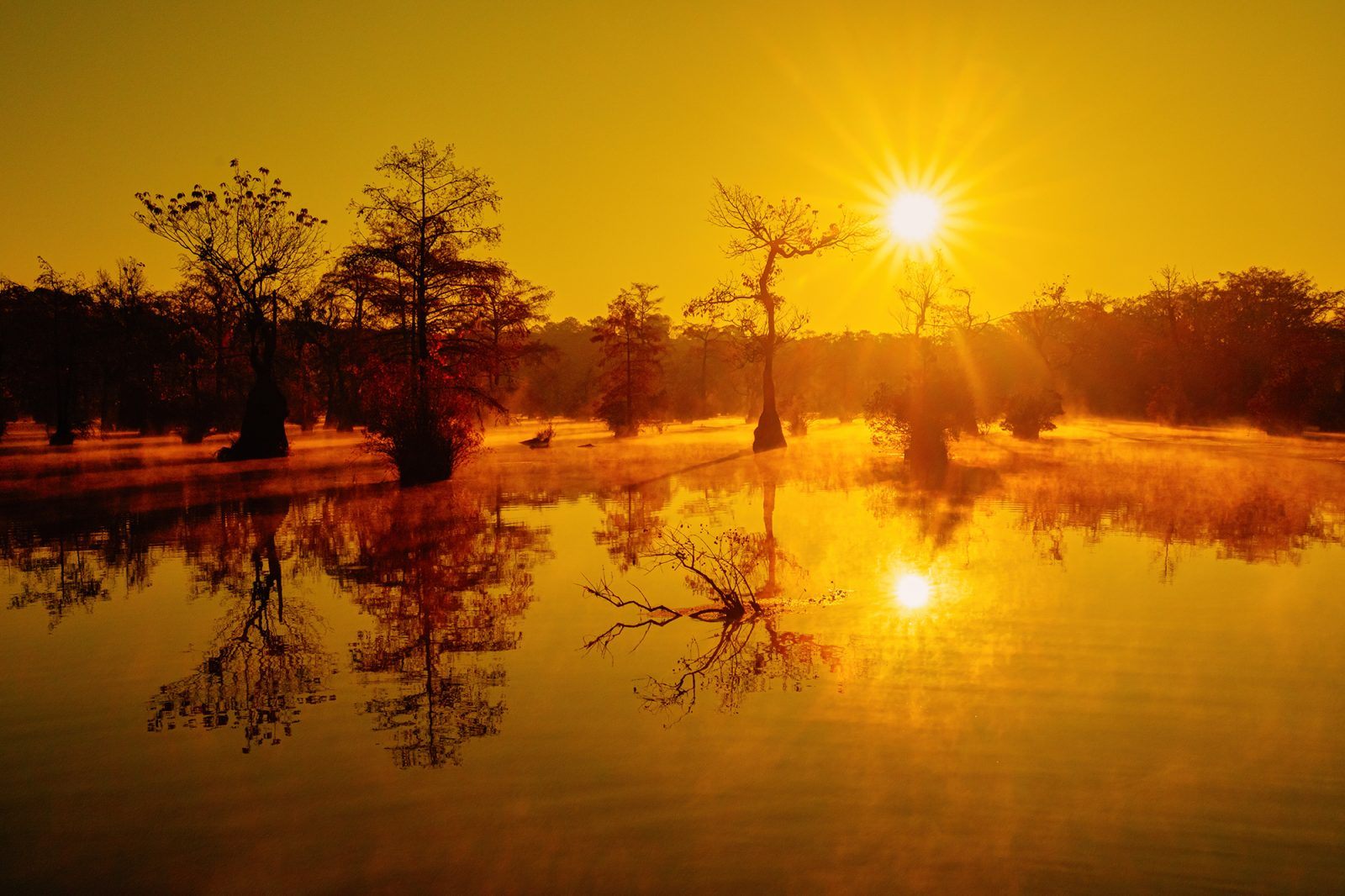 A pond of fog rising in the morning sun
