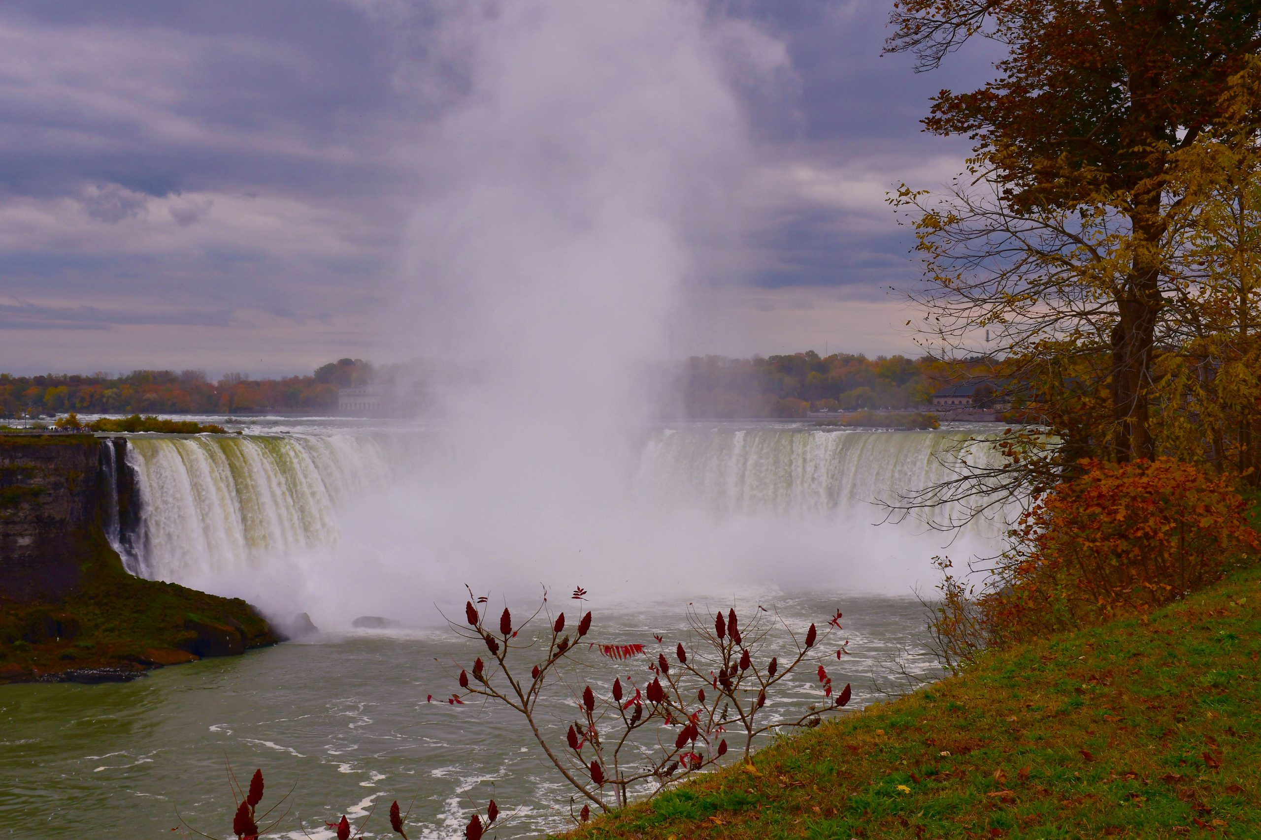 Horseshoe Falls in the Distance