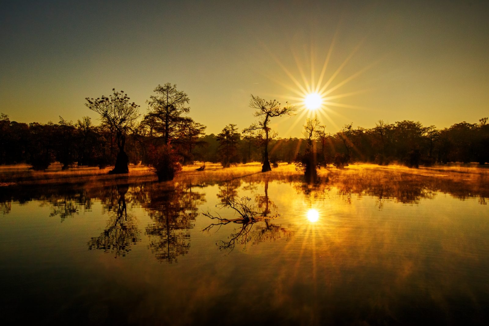 The sunrise of a pond that rises in the mist