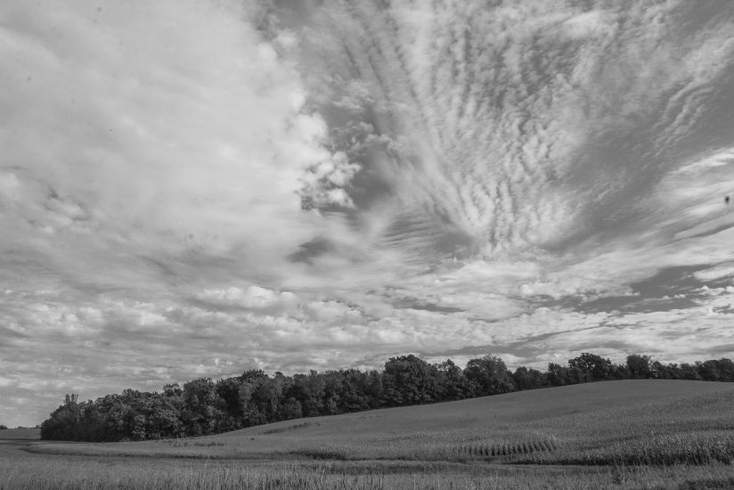 Clouds Over the Field