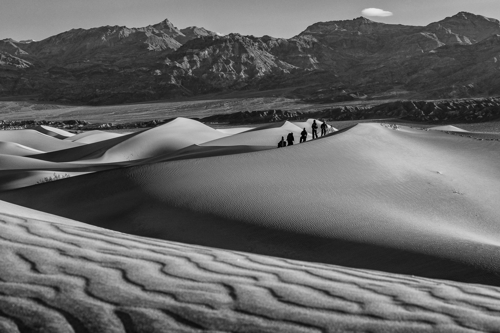 In The Dunes (Black and White)