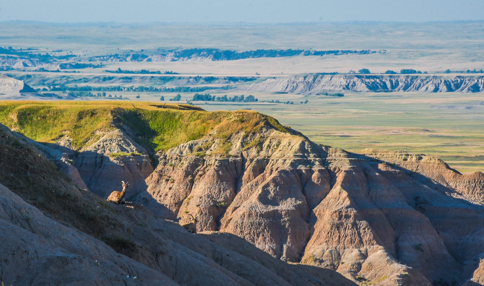 Hanging Out on a Rock in Badlands