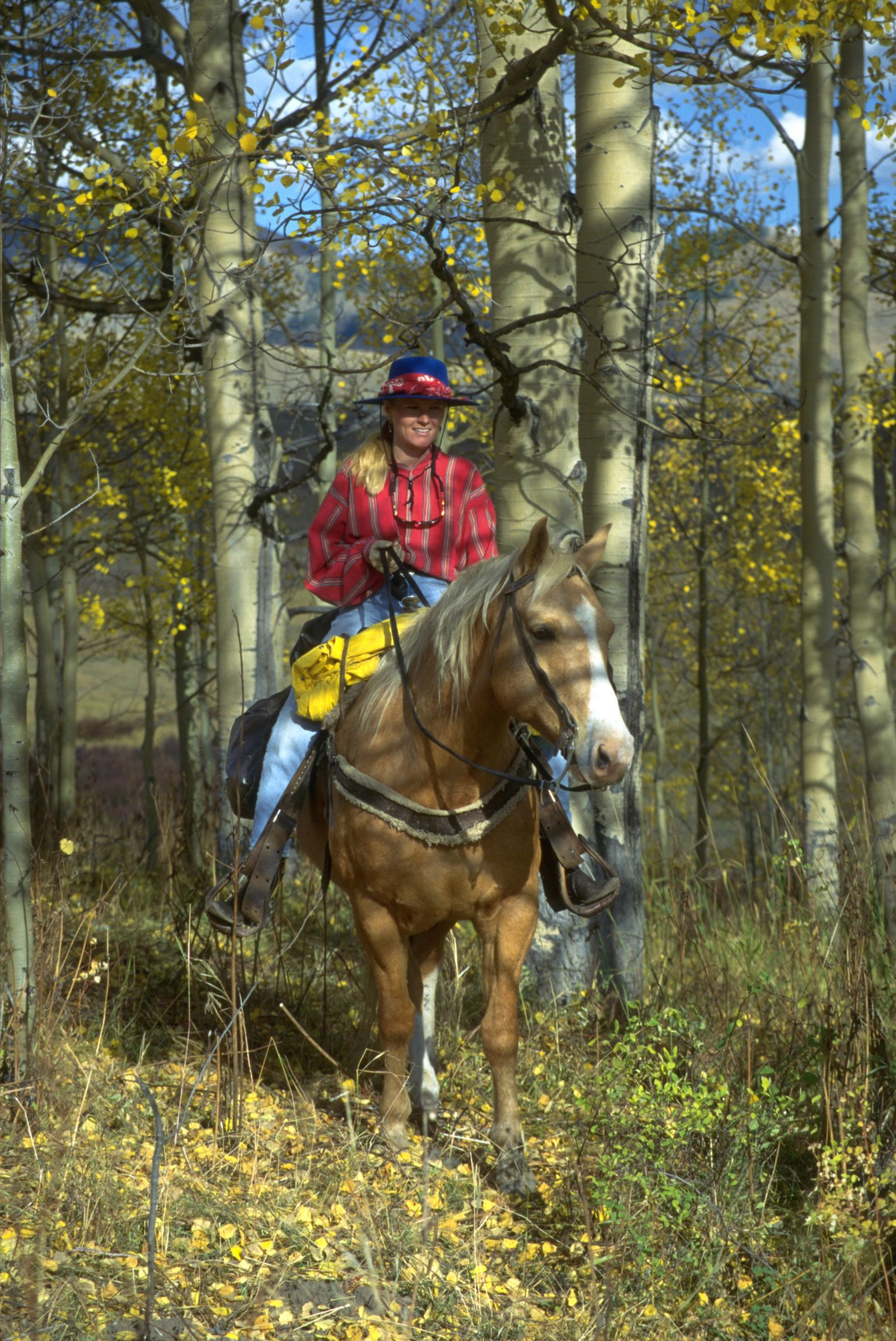 Lone Rider in the golden aspens