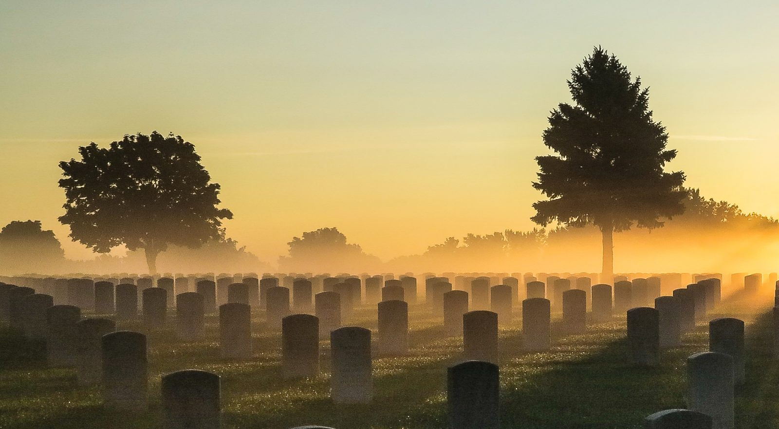 Foggy Morning Over Fort Snelling National Cemetery