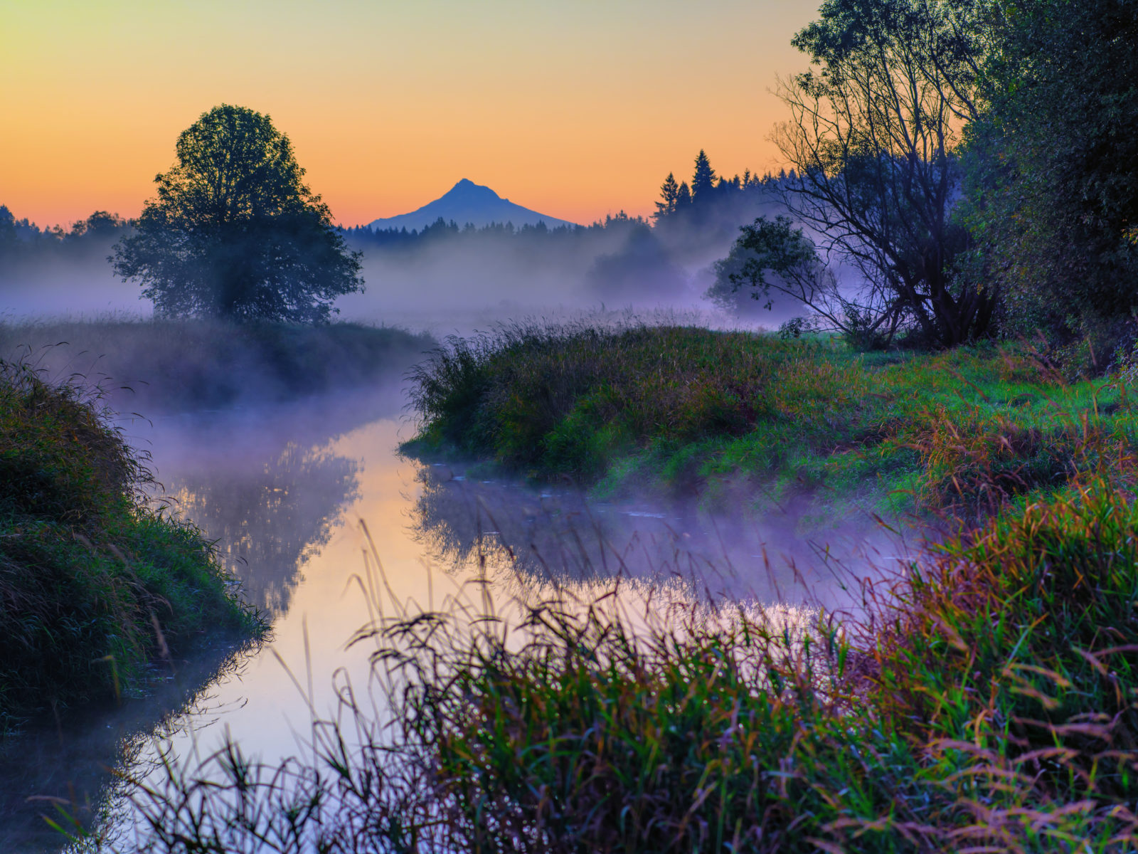 Salmon Creek Dawn