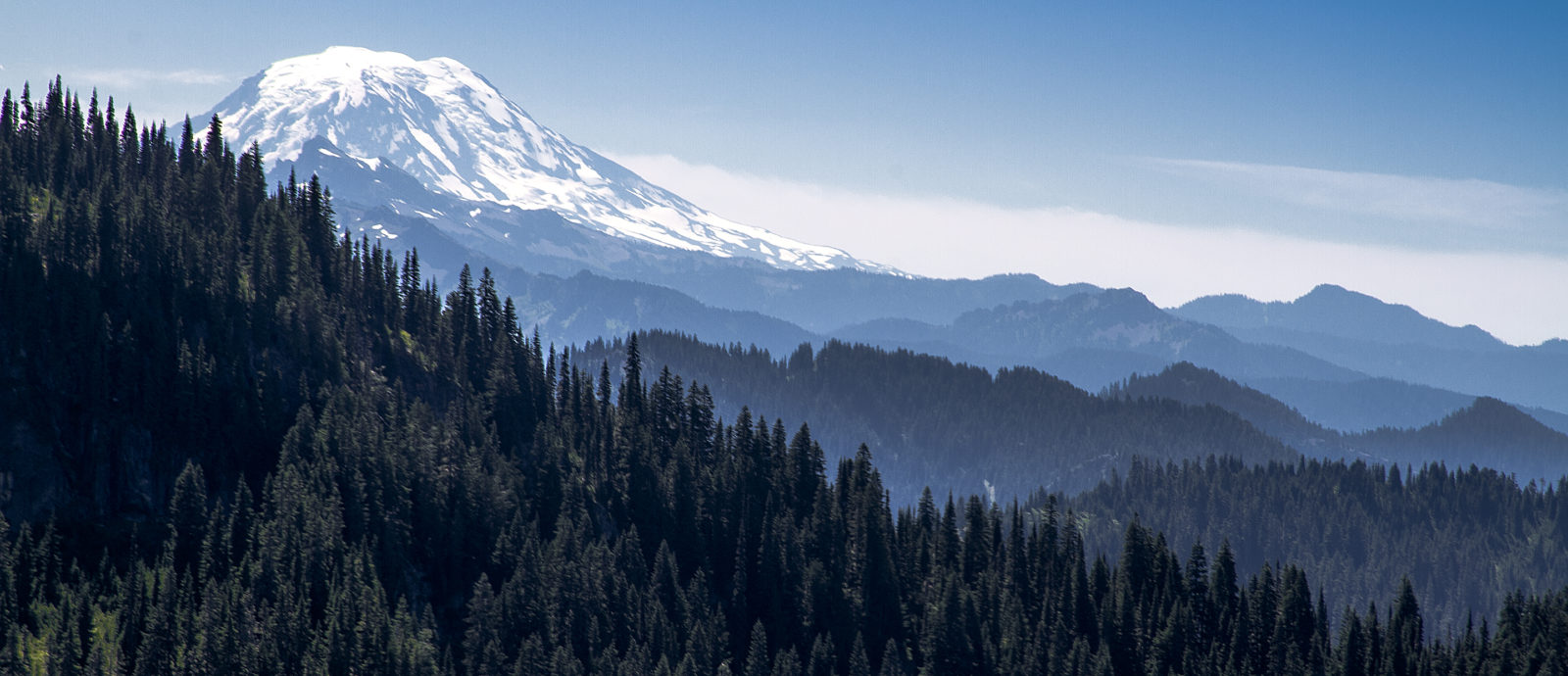 Mount rainier NP 5787
