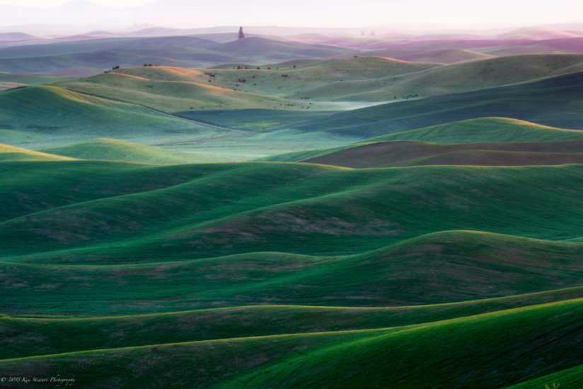 Early morning in the Palouse