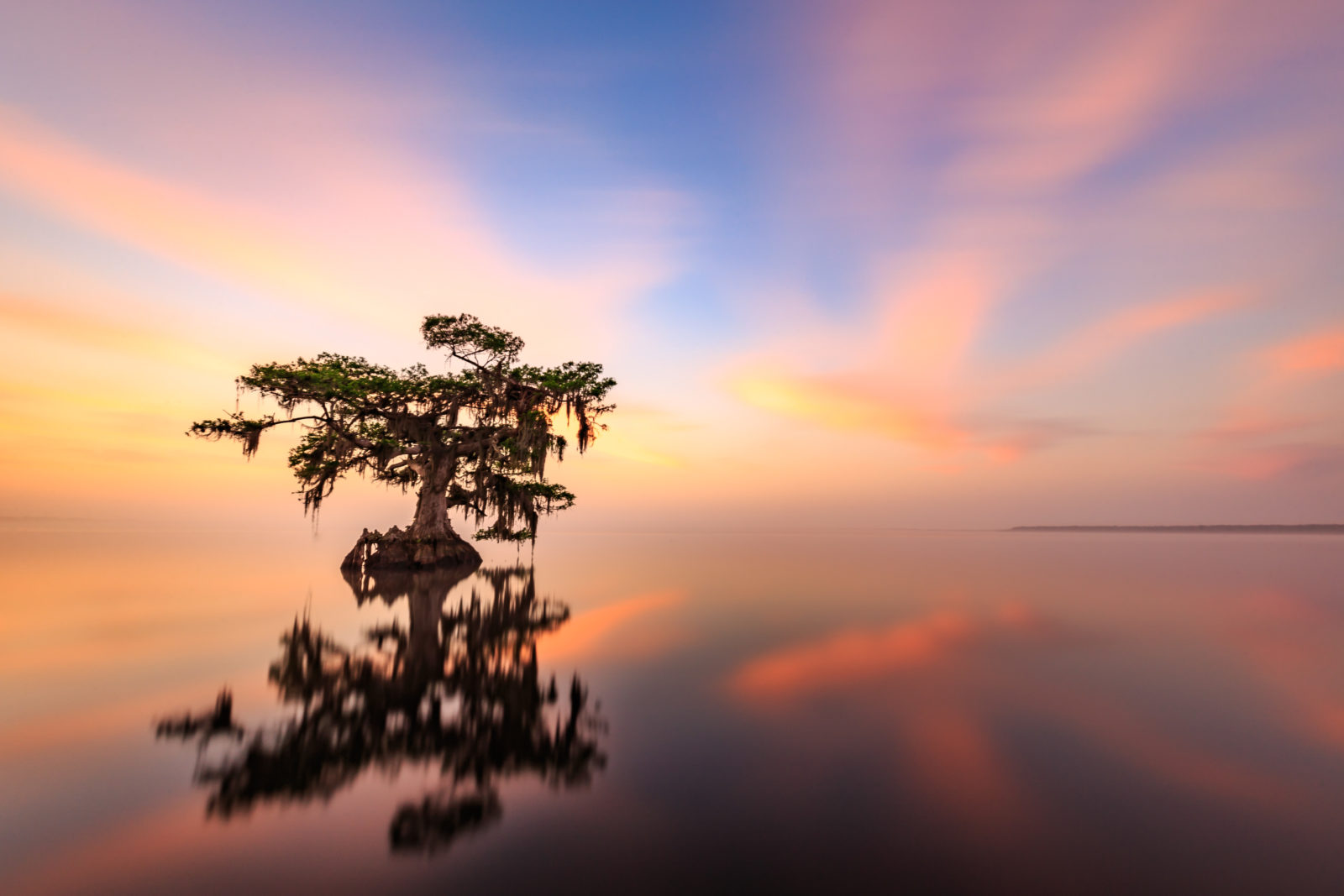 Blue Cypress Lake Sunrise