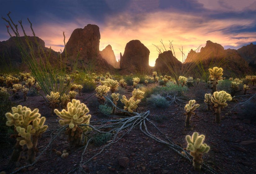 Kofa Mountains at dawn