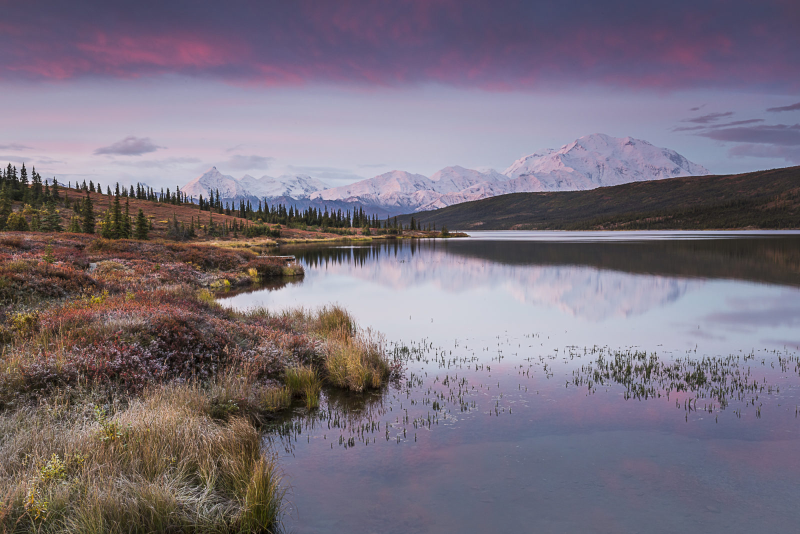 Alaska Wonder Lake Alpenglow