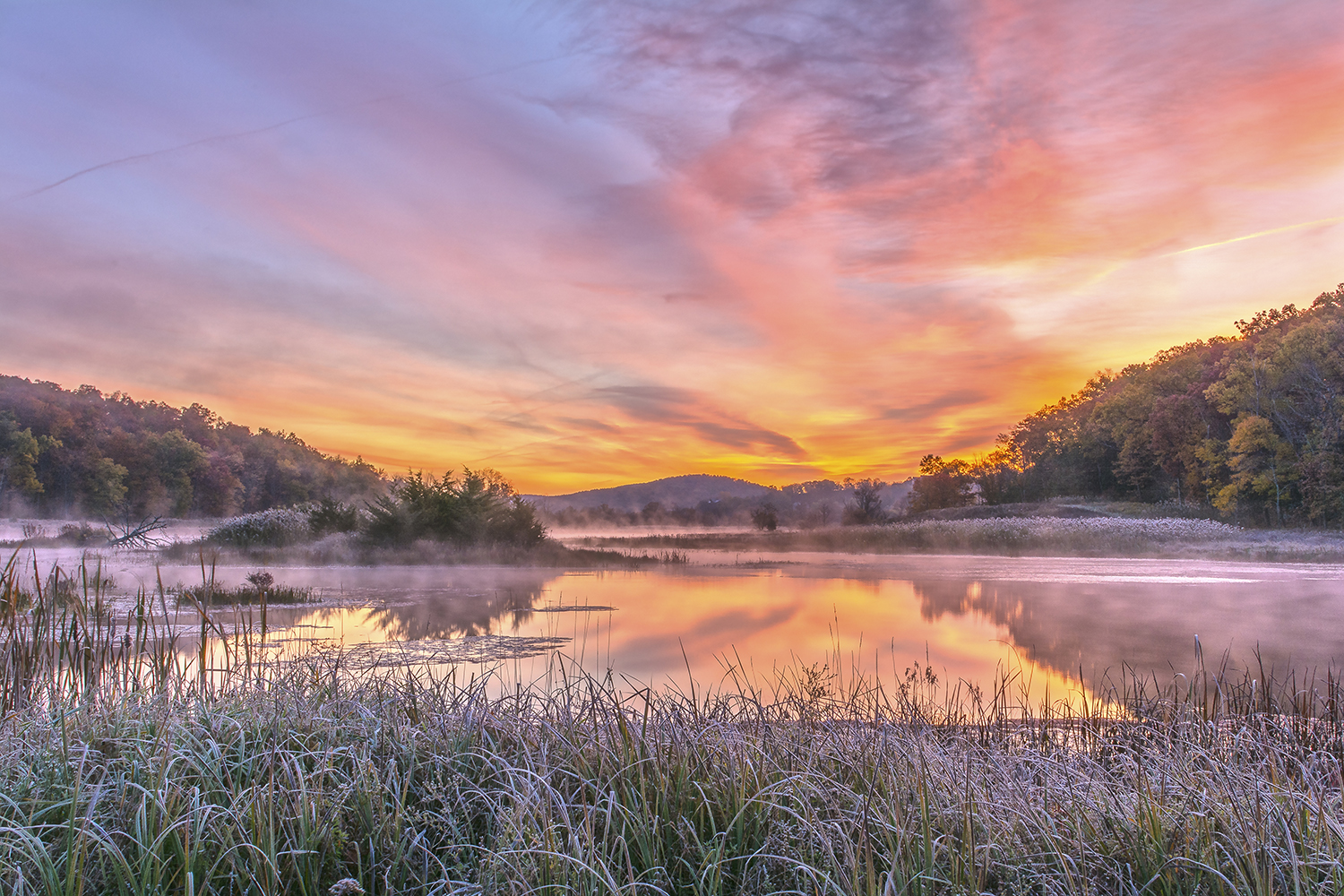 Frosted Dawn At The Wetlands