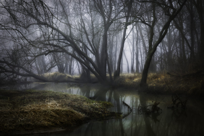 Mysterious River Bottoms