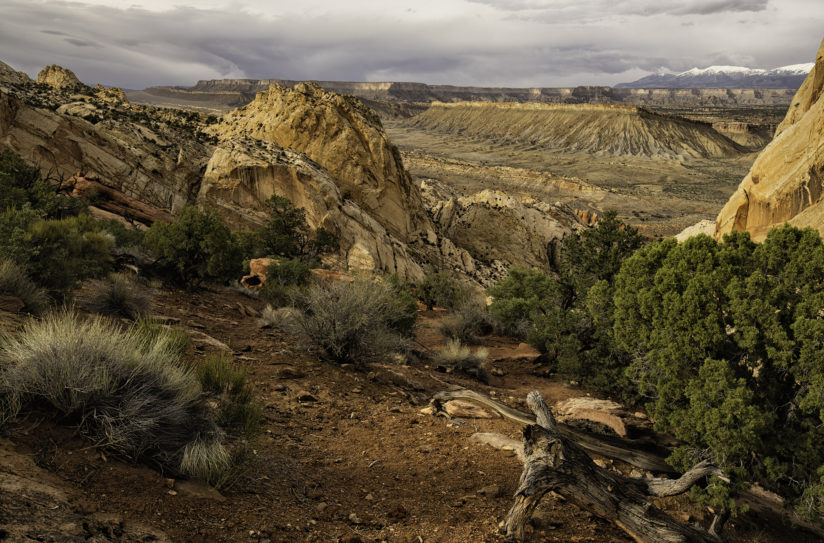 Waterpocket Fold and Strike Valley, Capitol Reef  National Park