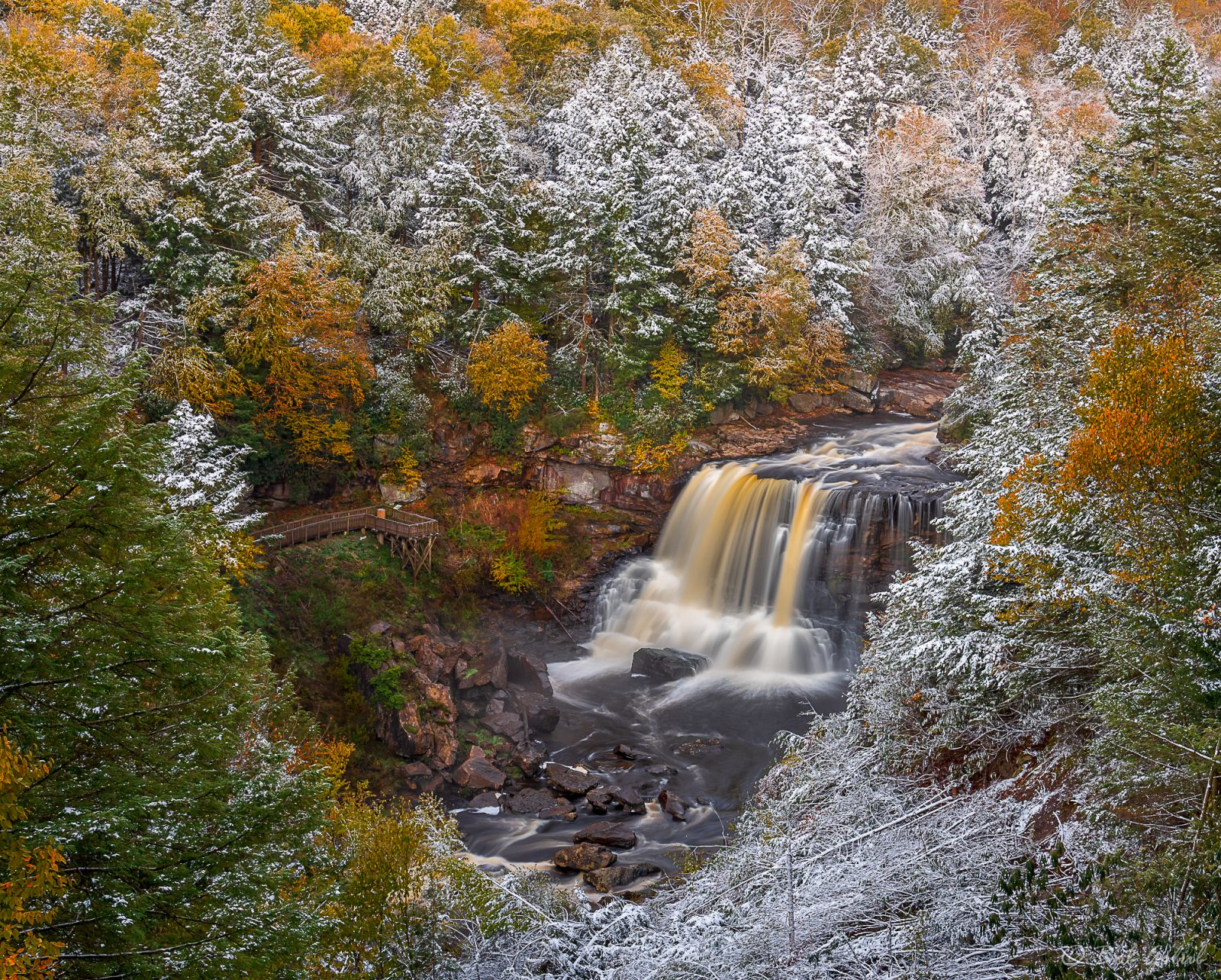 Early Winter at Blackwater Falls