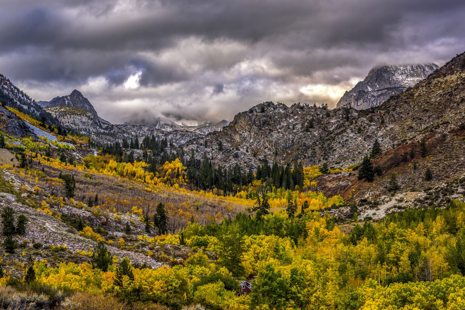 Sierra Autumn Splendor