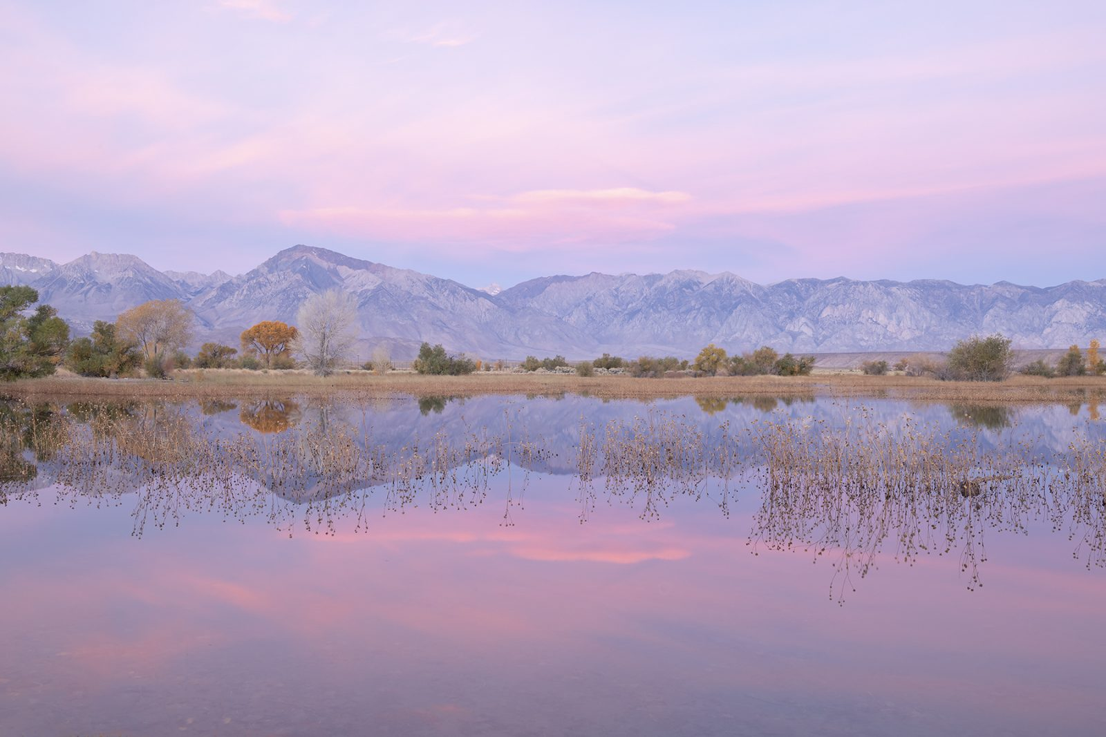 Sunrise, Owens Valley