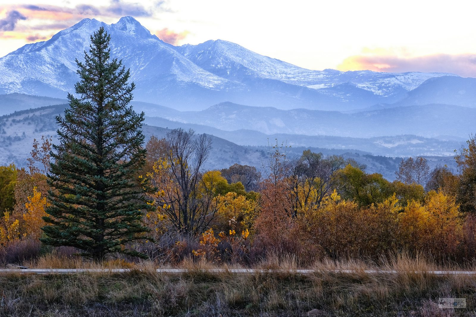 Longs Peak with Pine and Foliage, Colorado