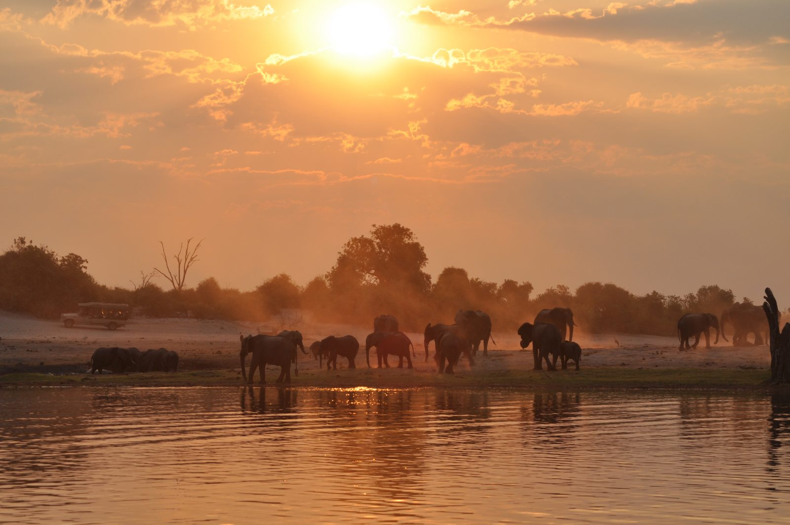 Just another sunset on the Chobe River!
