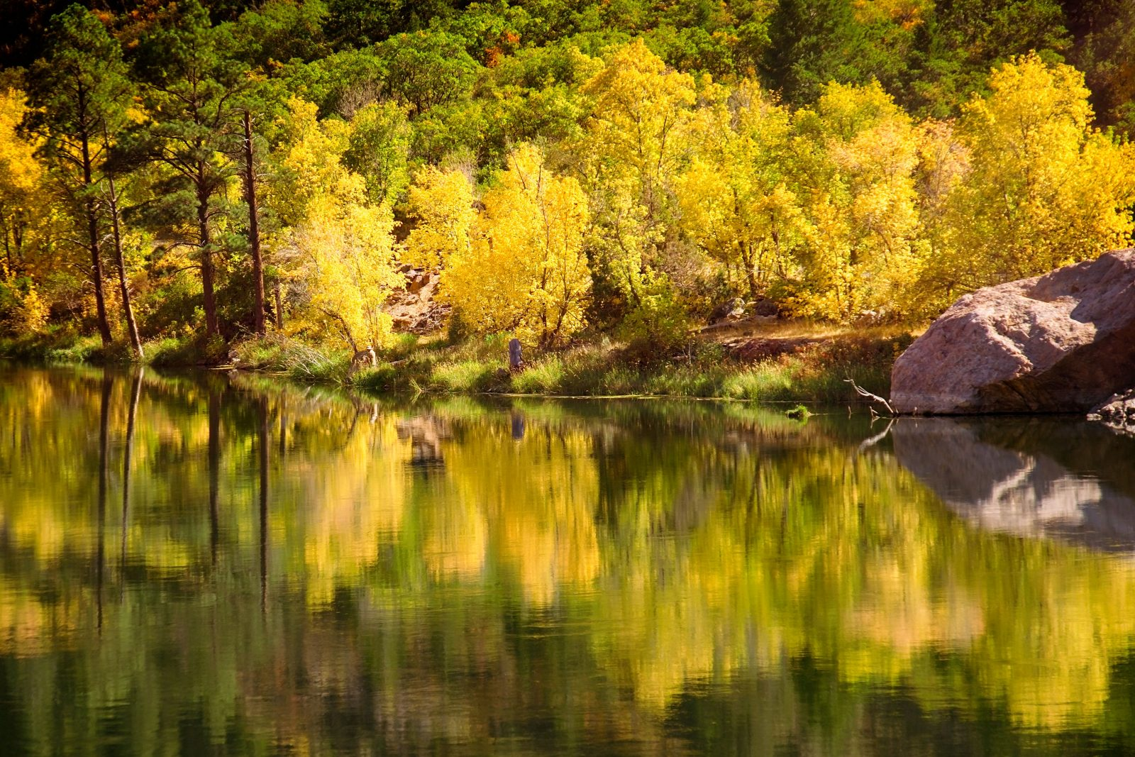 Fall Color Reflections on the Gunnison River