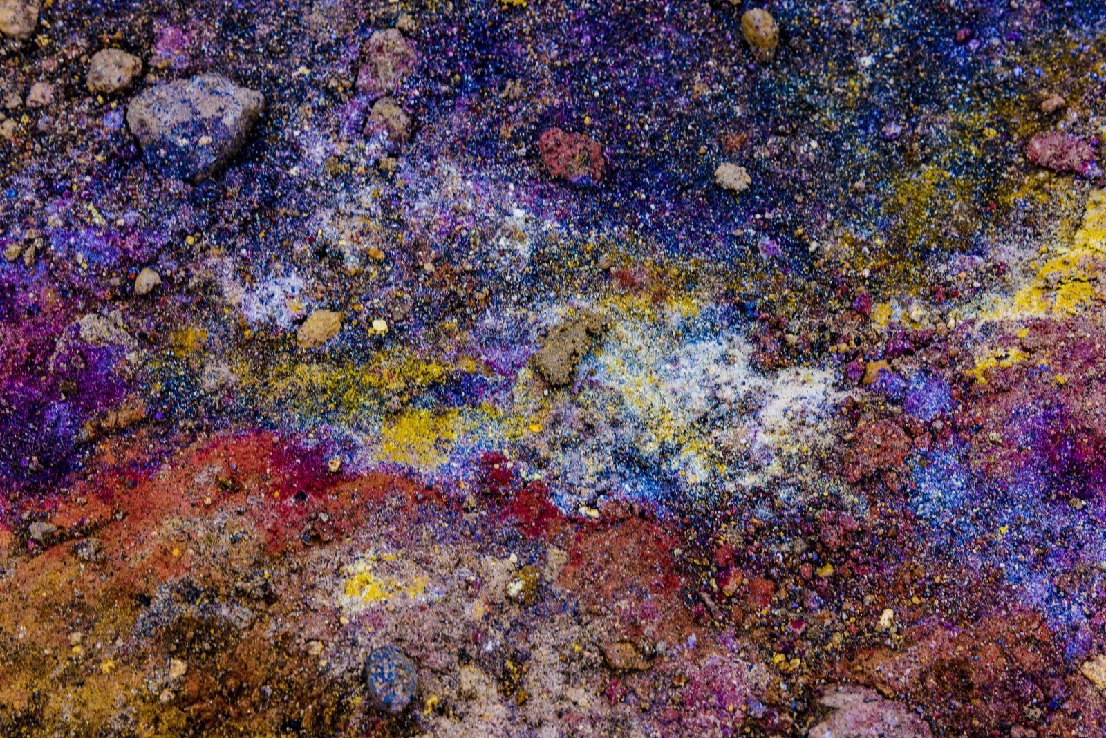 A Galaxy of Colors on a Patch of Land