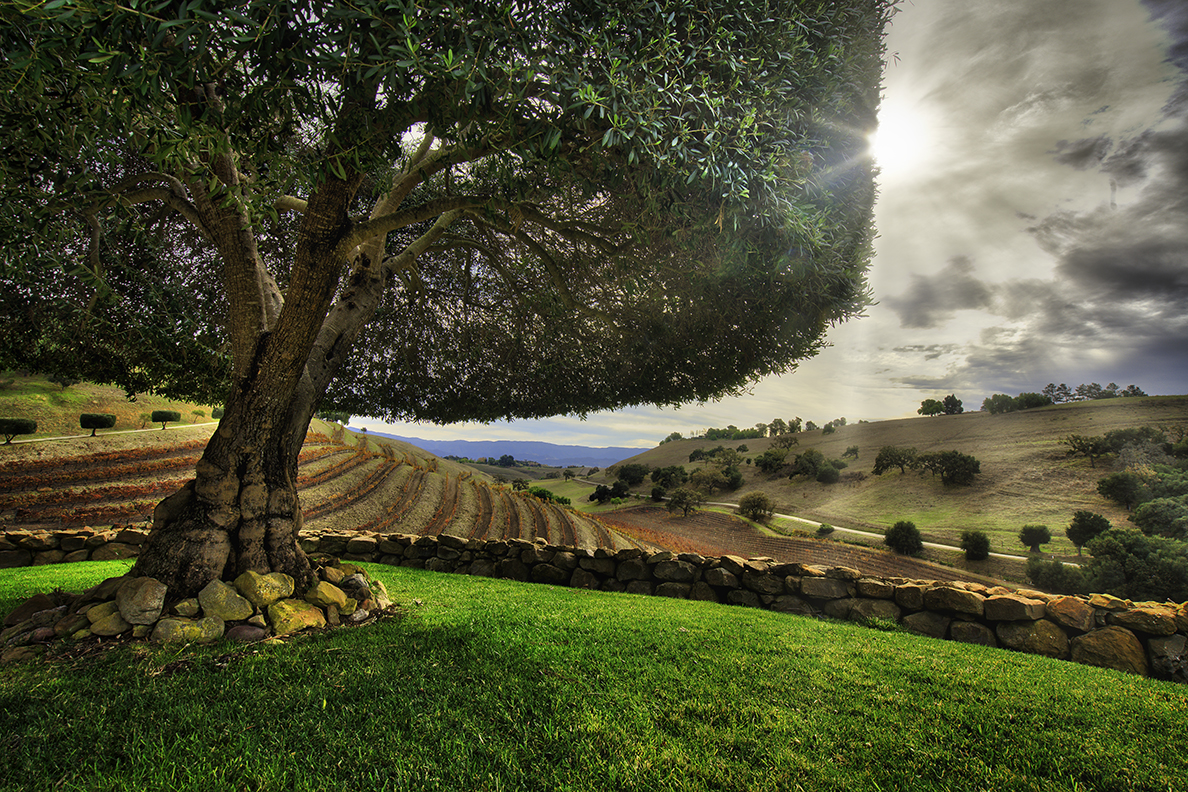 Tuscany in Solvang
