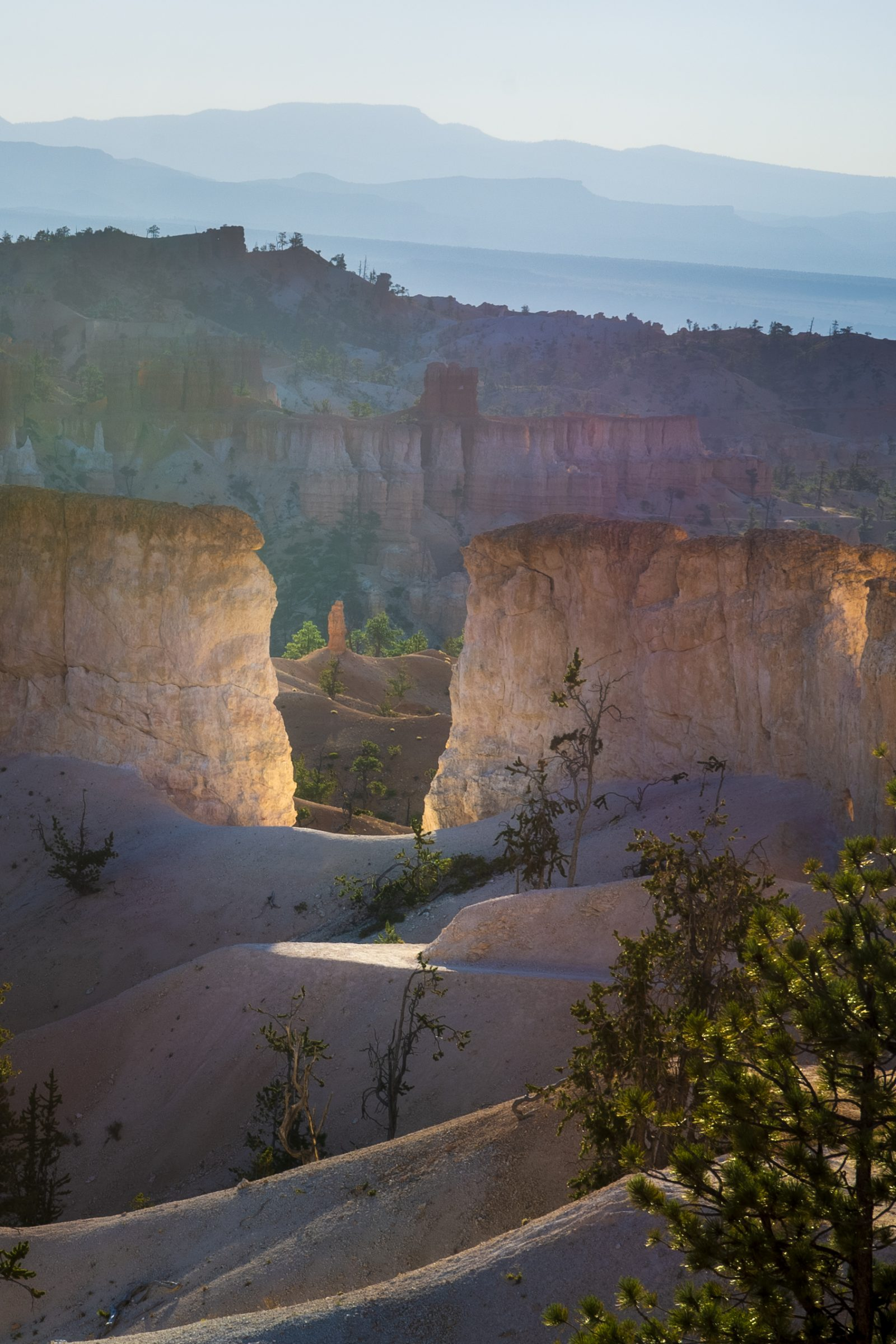 Fairyland Trail Illuminated – Bryce Canyon