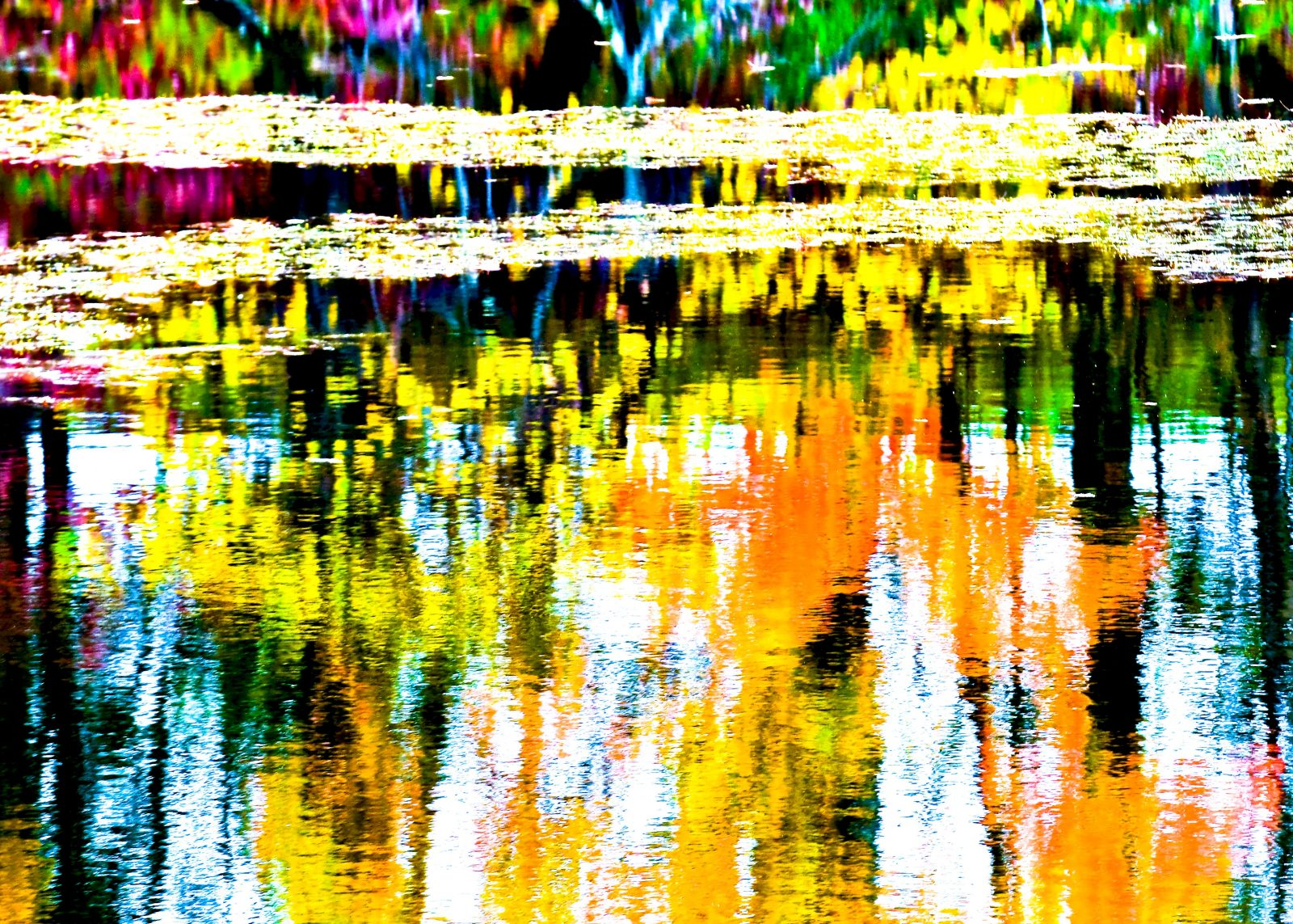 Color Splash & Reflections