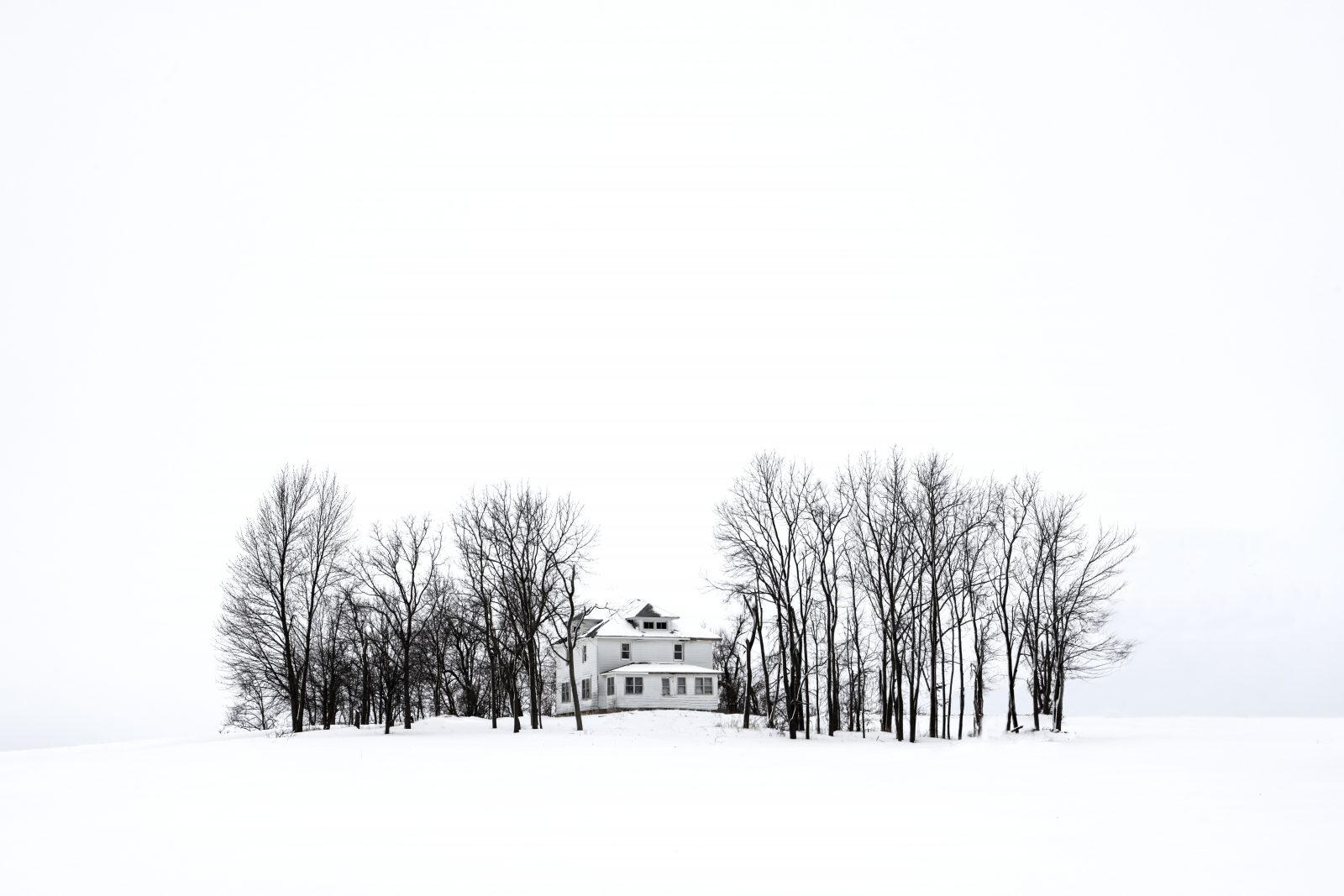 An Island in a Sea of White