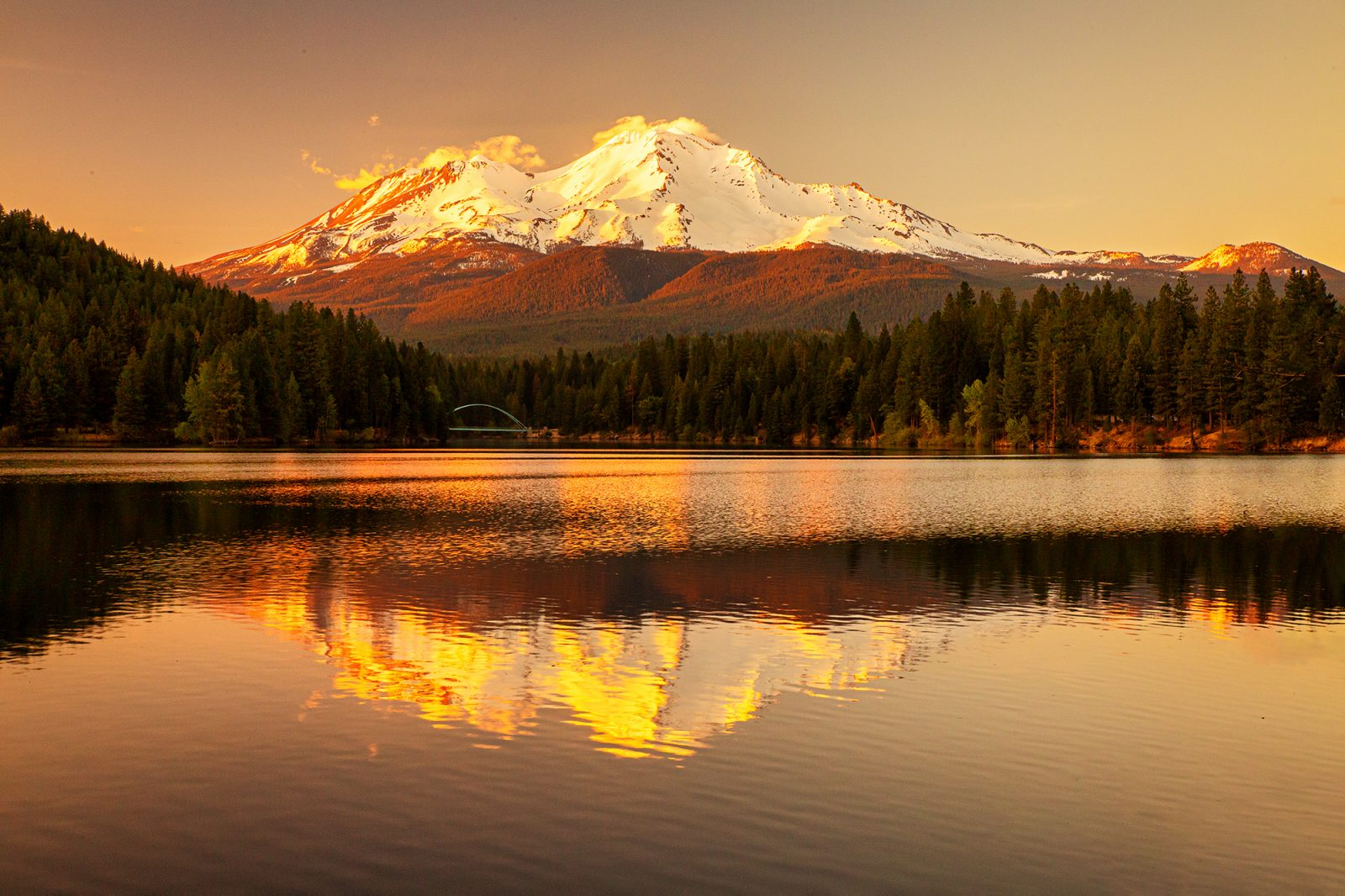 Snow-clad Mount Shasta and the forested shoreline