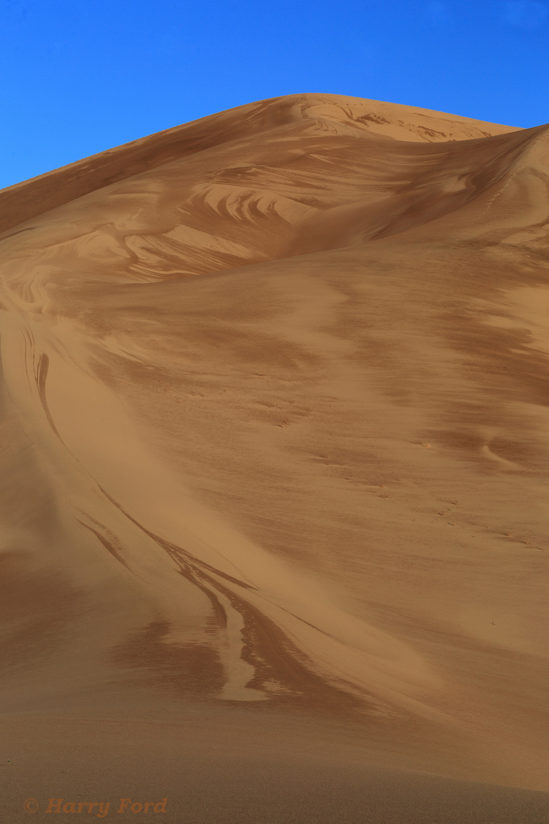 Ibex Dunes painted by the rain. Death Valley Nat'l Park