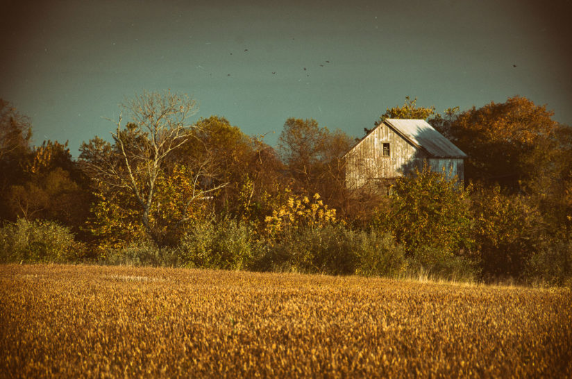 Abandoned Barn Colorized