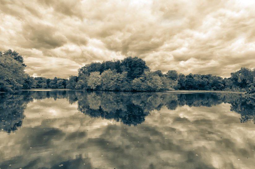 Autumn Reflections Split Tone