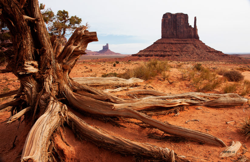 Monument Valley at the Roots