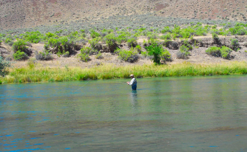 Fly Fishing Owyhee Canyon