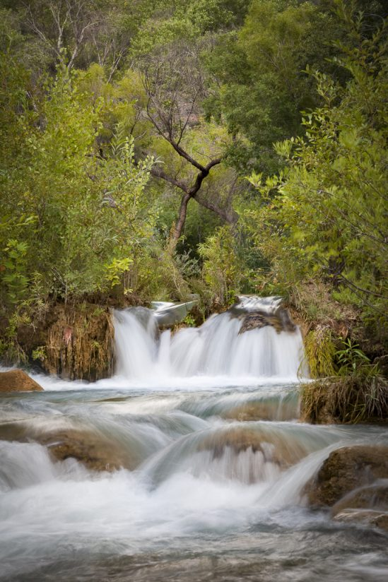 Fossil Creek