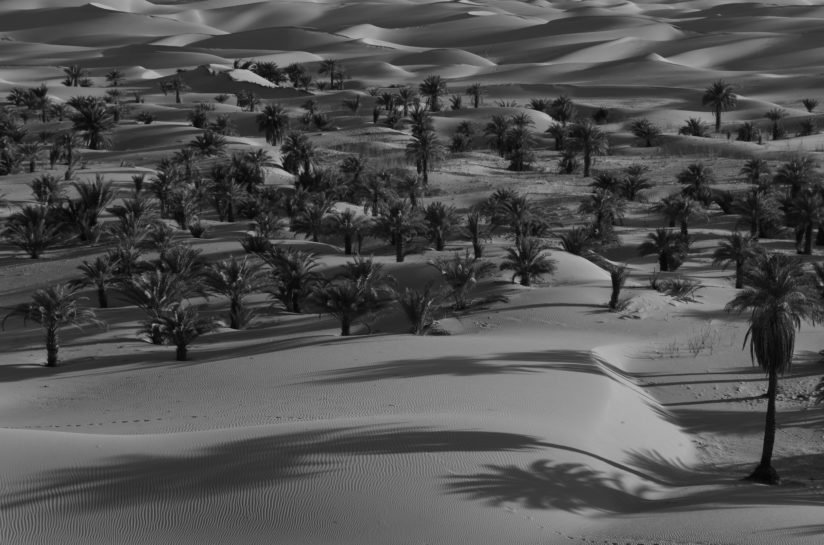Sahara in black & white 1