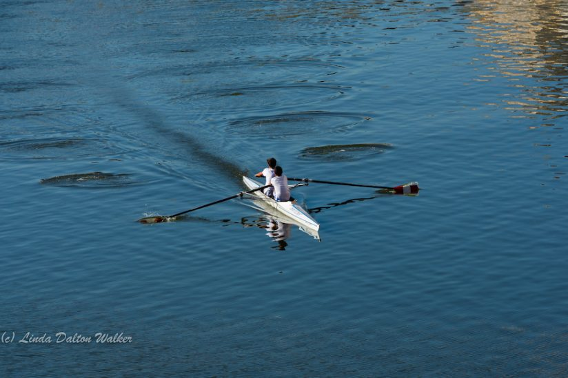 Training on Arno