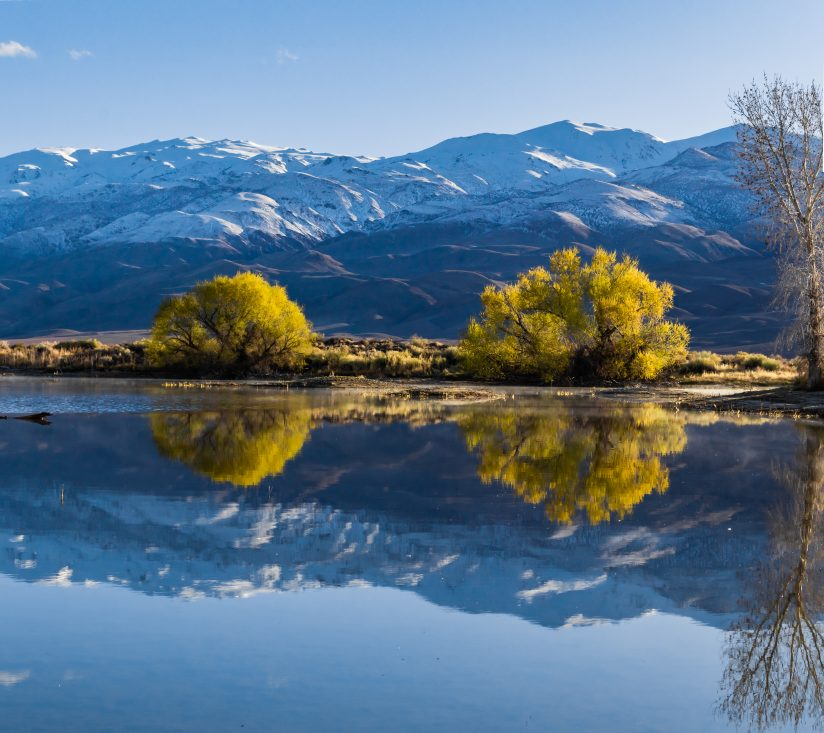 Reflecting Pond (Owens Valley)