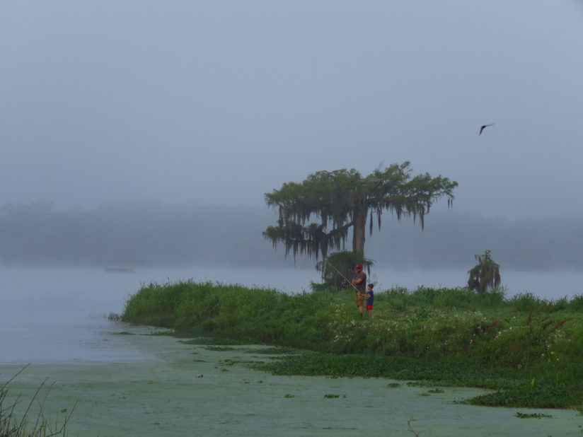 Foggy Fishing Morning