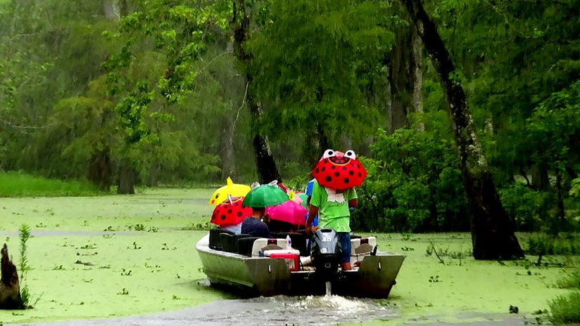 Rainy Louisiana Swamp Boat Ride