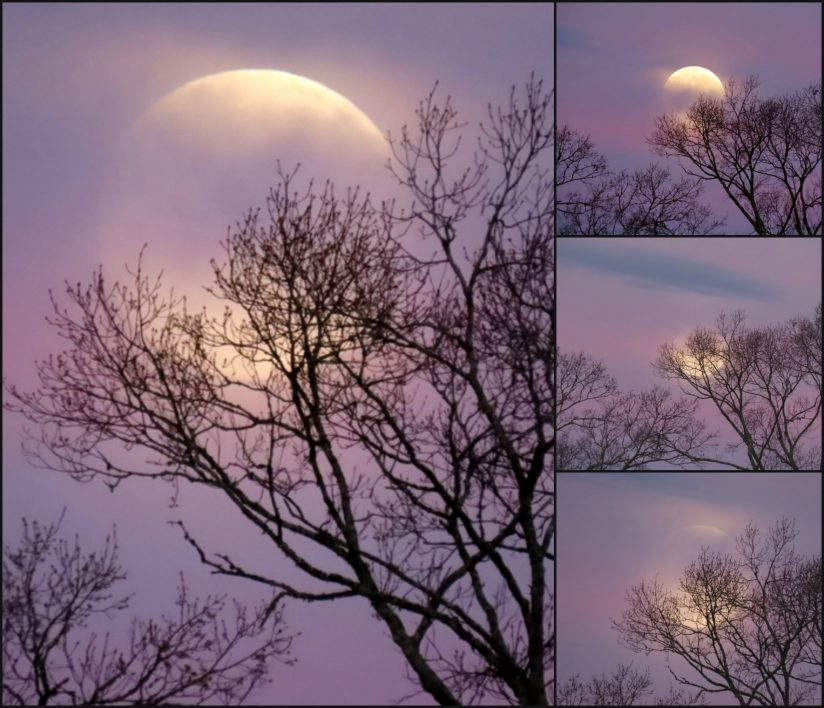 Super Snow Moon Setting