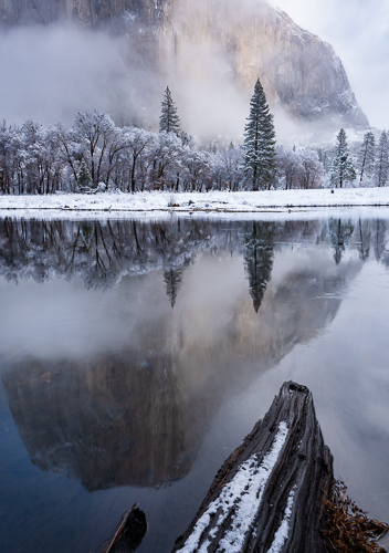 Winter Morning in Yosemite